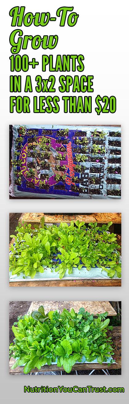 pin grow bag 01